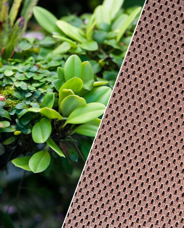 Epiweb Hygrolon Terrariengestaltung Terrarium Terrascape
